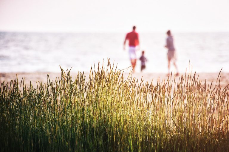 טיול מהסרטים: איך לתכנן טיול משפחתי מושלם